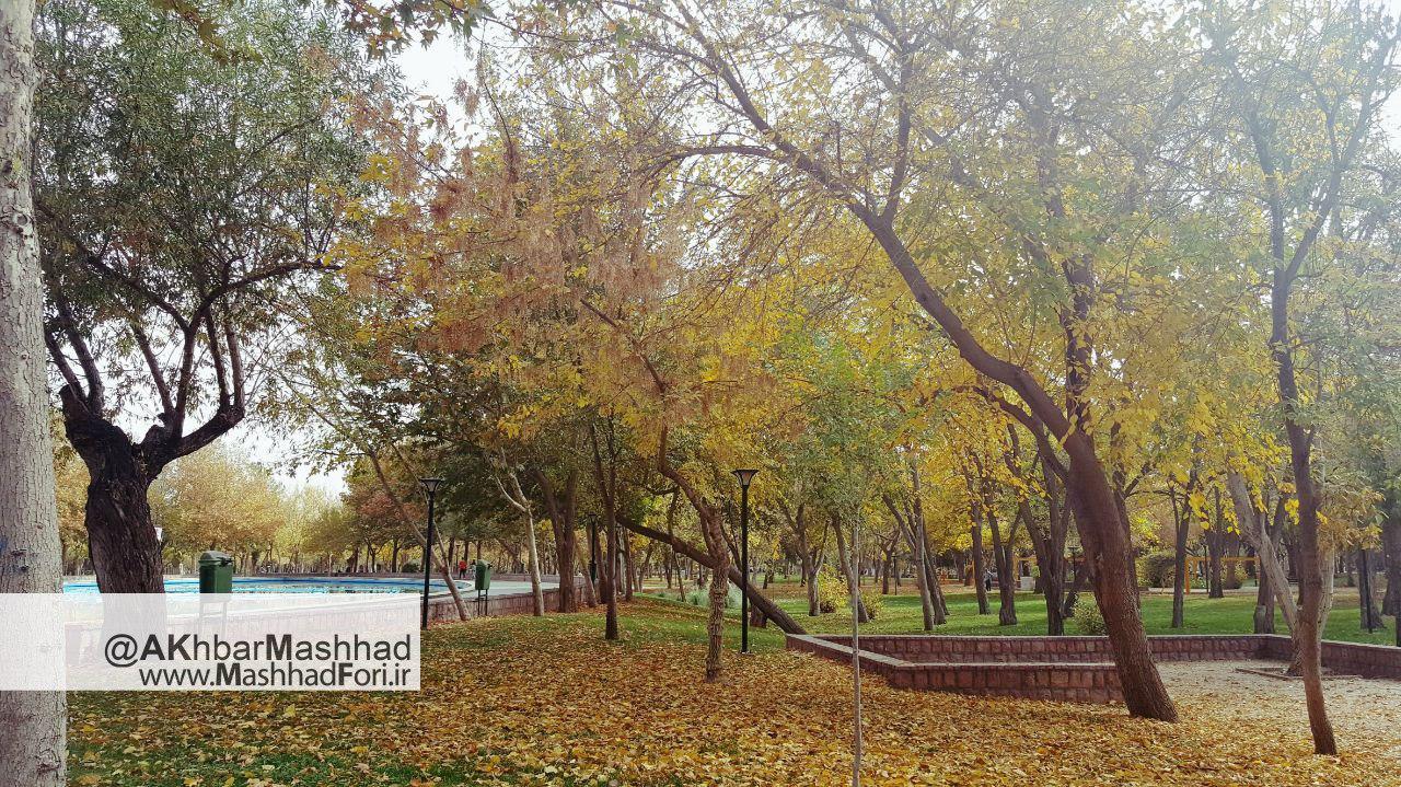 عکس پاییزی در مشهد