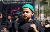 اشتیاق دهه هشتادیها برای زیارت حرم مطهر امام حسین(ع)+فیلم